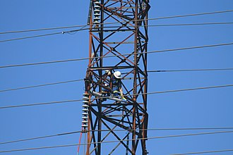 Transmission tower - A line worker working on a tower