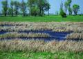 NRCSSD01020 - South Dakota (6059)(NRCS Photo Gallery).tif