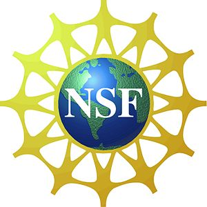 NSF Innovation Corps -- What America Does Best