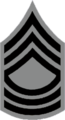 NYSP Zone Sergeant Stripes.png