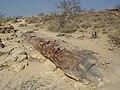 Namibia - P9133880 (15120564440).jpg