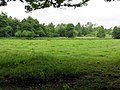 Naturschutzgebiet Diekbek Hamburg-Duvenstedt (5d).jpg