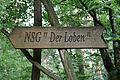 Naturschutzgebiet Loben 29.JPG