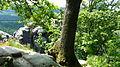 Neuer Wildenstein - Nationalpark Sächsische Schweiz 17.JPG