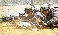 New York National Guard (26636291843).jpg