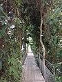 New greenhouse Graz 1.jpg
