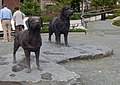 Newfoundland and Labrador statues in St John's.jpg