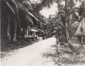 Ngiwal Town, Palau (from a book published in 1932).png