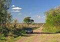 Nogoyá, Entre Ríos, Argentina - panoramio (150).jpg