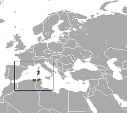 North African White-toothed Shrew area.png