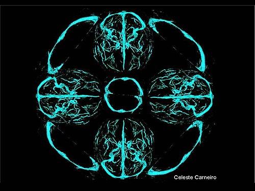 Nov 17 - Foto do cérebro - trabalhada - Celeste Carneiro.jpg