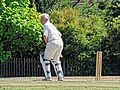Nuthurst CC v. Henfield CC at Mannings Heath, West Sussex, England 030.jpg