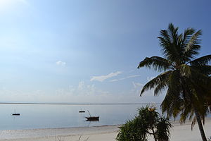 Nyali Beach from the Reef Hotel during high tide and still conditions in Mombasa, Kenya 8.jpg