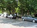 Obeliscul amplasat pe locul Teatrului evreiesc Pomul Verde din Iași1.jpg