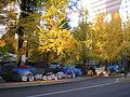 Occupy Portland November 9 camp, fall colors.jpg