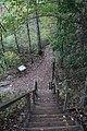 Ohiopyle State Park River Trail - panoramio (135).jpg