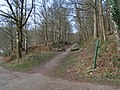 Old Railway Track from Coleford to Parkend - geograph.org.uk - 410160.jpg
