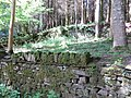 Old stone walls hidden in the Forest - July 2012 - panoramio.jpg