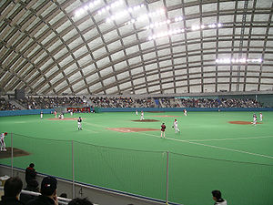 Nipro Hachiko Dome - Interior view
