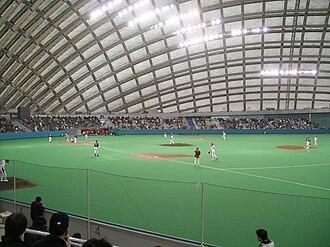 Ōdate - The Nipro Hachiko Dome baseball stadium