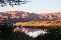 Oranjefloden-2266 - Flickr - Ragnhild & Neil Crawford.jpg