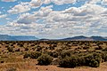 Oregon Sagebrush Landscape PLC-MT-OR-1.jpg