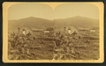 Owl's Head Slide, July 10th, 1885, Jefferson, N.H, from Robert N. Dennis collection of stereoscopic views 4.png