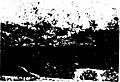 Owrazan - Jalal Ale Ahmad (page 39 crop).jpg