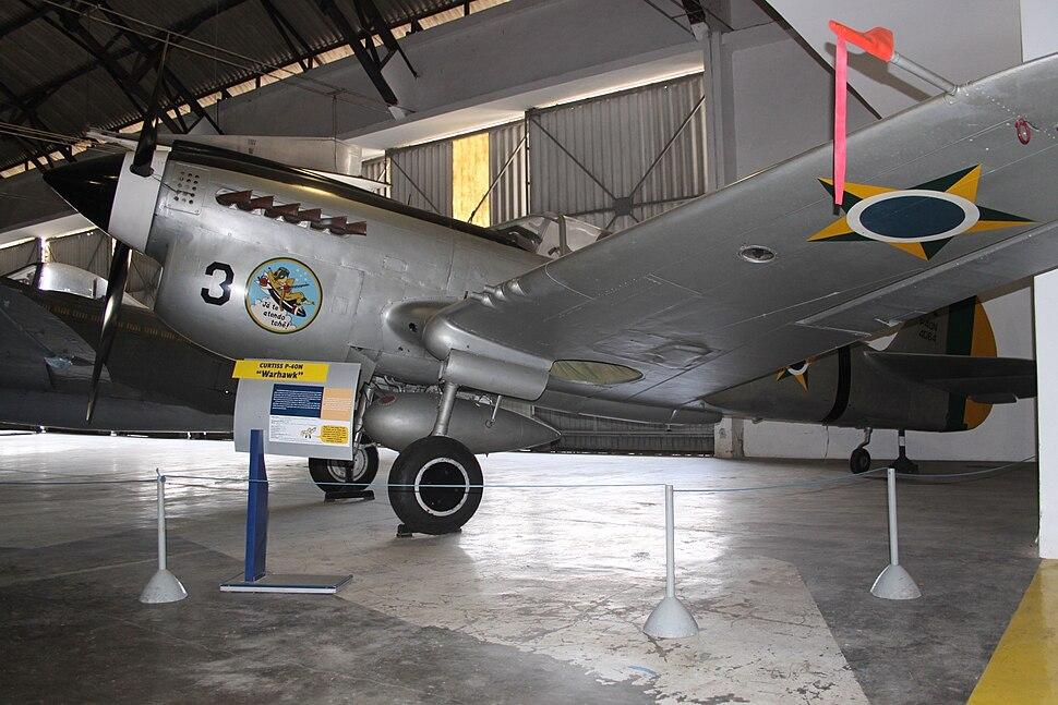 P-40N (8141412276)