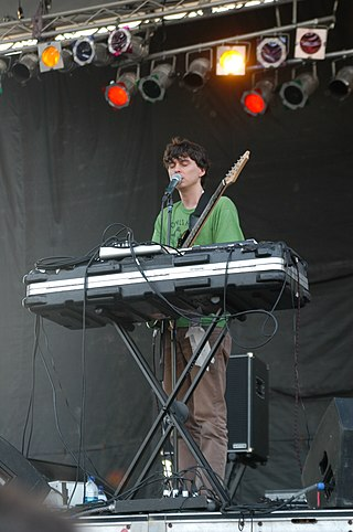 Panda Bear (musician) American musician