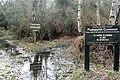 Padworth Common - geograph.org.uk - 1191337.jpg