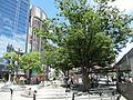 Paiyama - panoramio.jpg