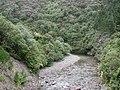 Pakuratahi River from Pakuratahi Truss Bridge.jpg