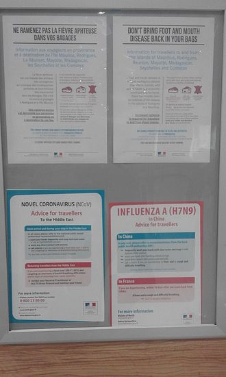 Pandemic - Advice (in French and English) for travellers on risks of epidemics abroad. Posters from the Charles De Gaulle airport, Paris, 2016.