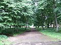 Paneriai 21367, Lithuania - panoramio (1).jpg