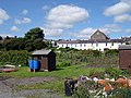 Park Hinds allotments - geograph.org.uk - 1440700.jpg