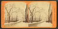 Park Street and State House, from Robert N. Dennis collection of stereoscopic views.png