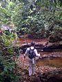 Parque Nacional La Cangreja, Costa Rica.jpg
