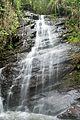 Parque Nacional de Itatiaia-3.jpg