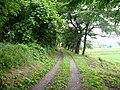Path(あぜ道) - panoramio.jpg