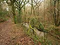 Path and stream, Porsham Wood - geograph.org.uk - 1770337.jpg