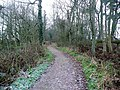 Path at the RSPB Mersehead reserve - geograph.org.uk - 1103757.jpg