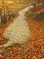 Path in lake Logga.jpg