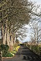 Path leading to Warkworth Cemetery - geograph.org.uk - 1725682.jpg