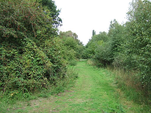 Path on dismantled railway line, Roydon - geograph.org.uk - 2050512