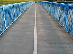 Bay Farm Island Bridge - View along bicycle bridge