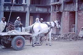 Peschawar-slum-IHS-1993-21-Men-with-horsecart.JPG
