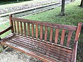 Photograph of a bench (OpenBenches 427).jpg