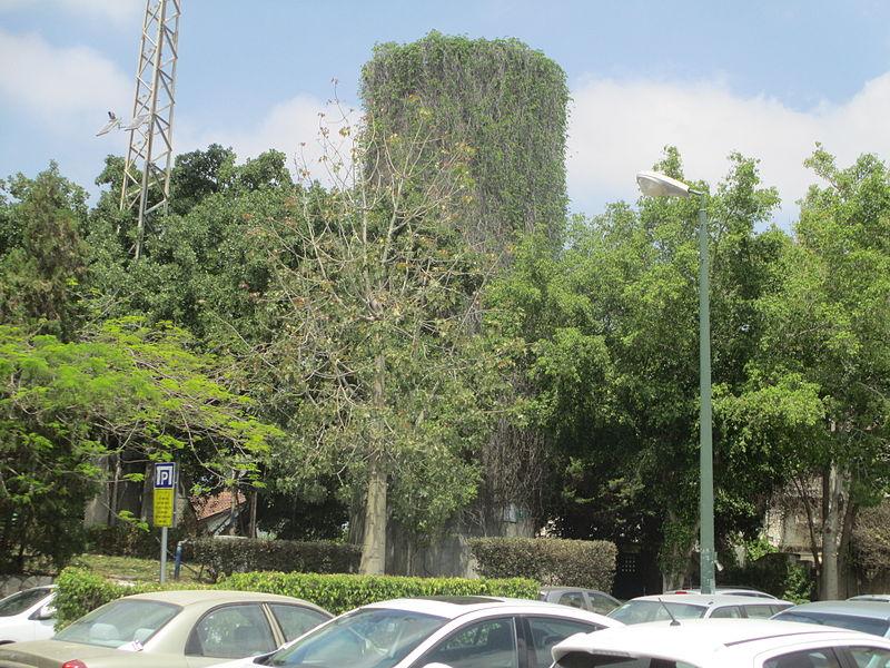 מגדל המים הישן בקריית אונו