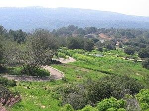 Carmel Hai-Bar Nature Reserve - Image: Piki Wiki Israel 46153 nature